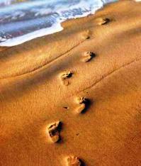 IMG_pas-dans-le-sable