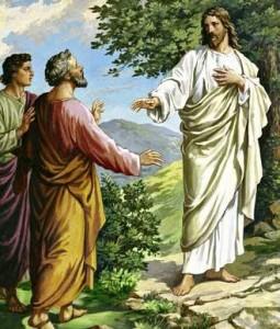Jésus, 12ème dimanche du Temps Ordinaire, Année C